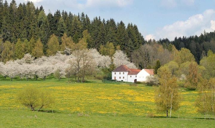 Penzion Krakovice - Historical country homestead