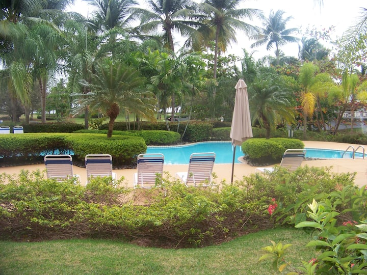 Palma Dorada   Beach and Pool View