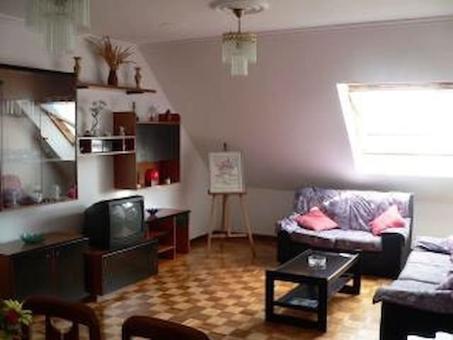 Viveiro con preciosas vistas - Viveiro - Apartment