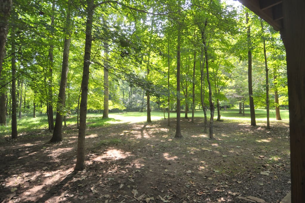 The surrounding property (5 acres) will rejuvenate you.