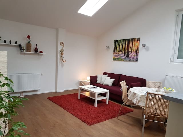 2 Room Apartment near Exhibition/Airport/Stuttgart
