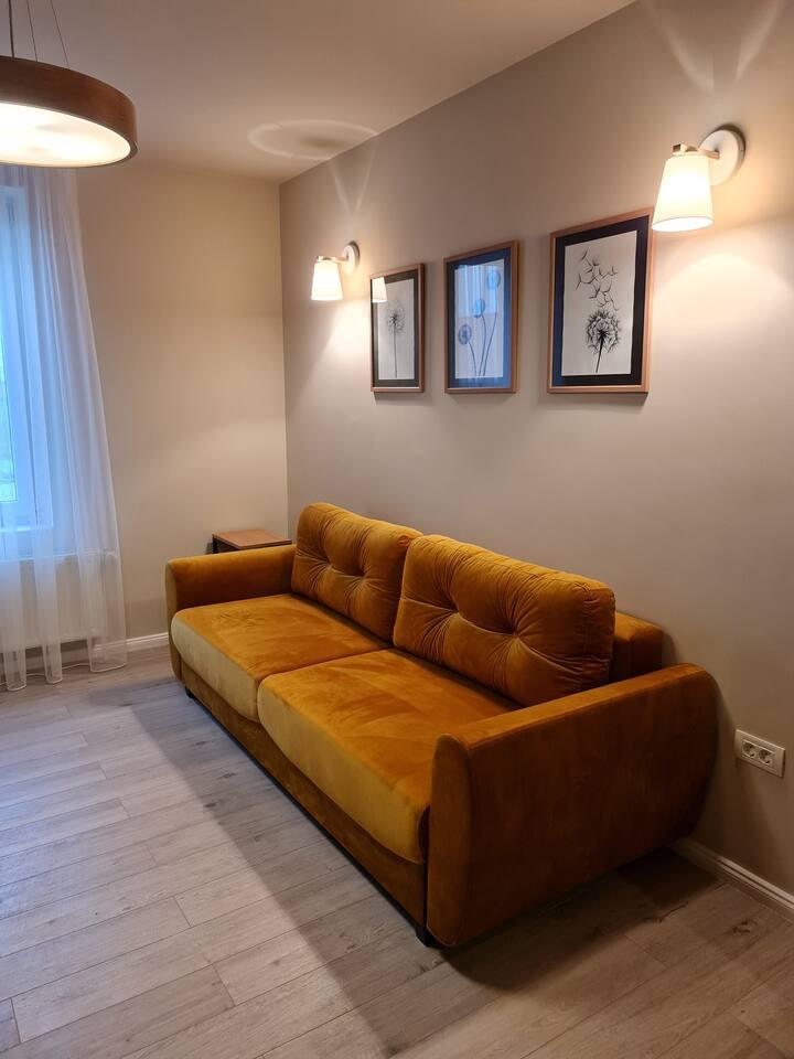 Apartament Casa La Fayette Timisoara