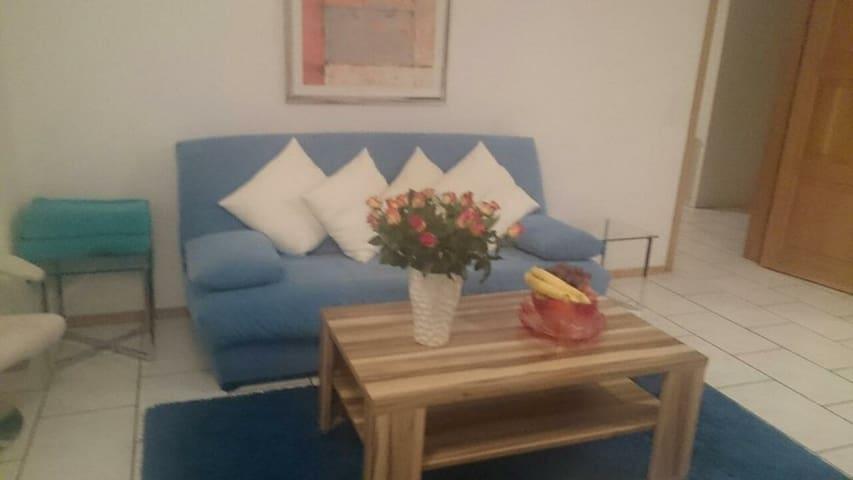 helle grosse  3.5 zimmer wohnung, im 4 stock, - Solothurn - Apartemen