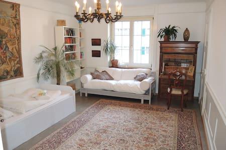 St. Gallen City: Grosses Zimmer in Altbauwohnung - Sankt Gallen