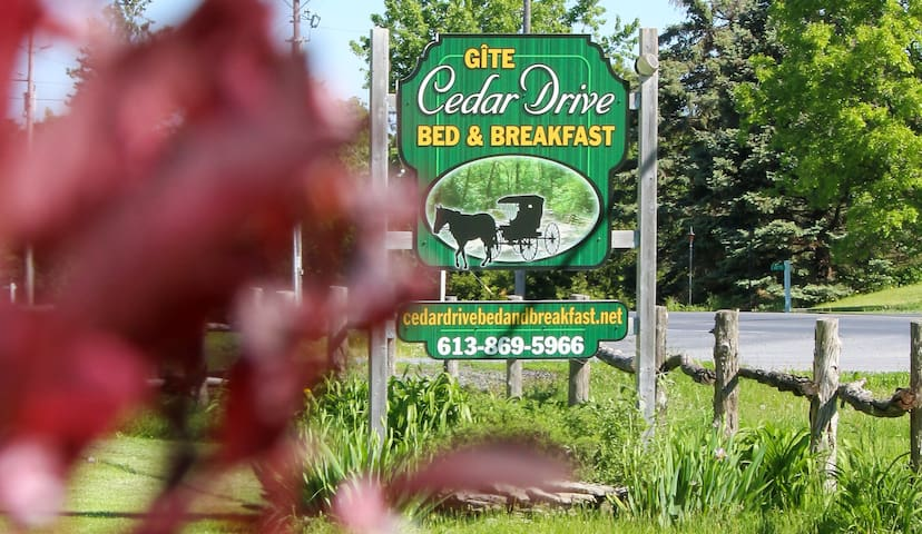 Cedar Drive Robin Room
