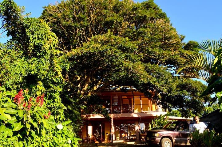 Casa Mariposa /Monteverde. - Monteverde - Casa