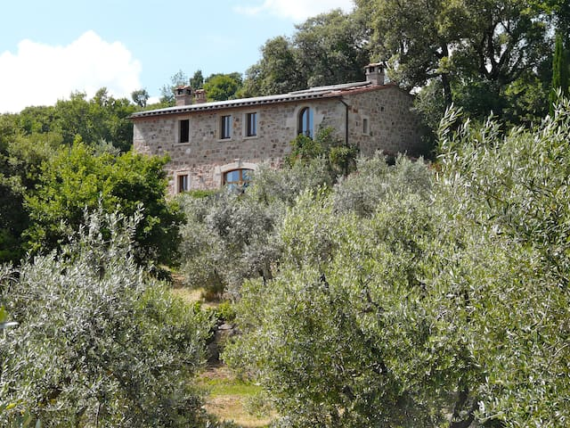 Ferien im Olivenhain - Sassofortino - Bed & Breakfast