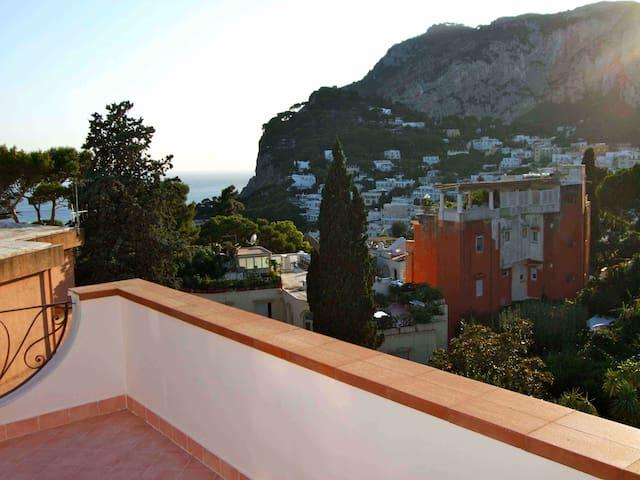 Breathtaking Panoramic Penthouse in Capri Center