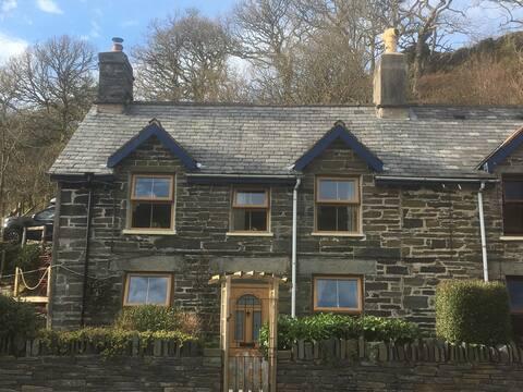 Domek Pretty Snowdonia