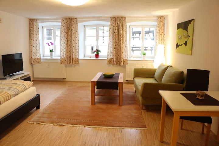 Schmuckstück in historischer Altstadt - Dinkelsbühl - Apartamento