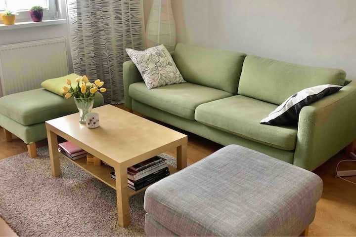 Cosy apartment near the city center and nature
