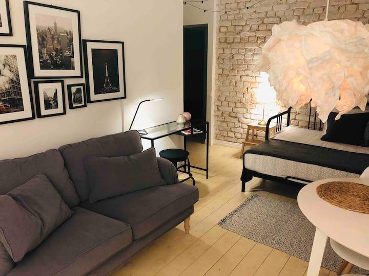 Cozy apartment in Riga center