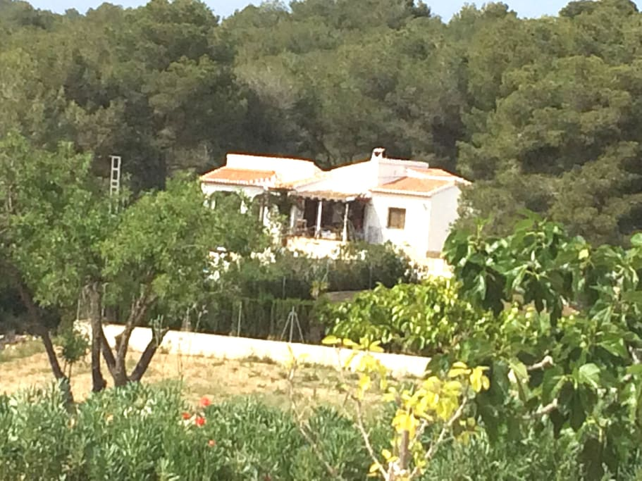 Long-distance view of the villa.