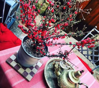 Casa ideal para familia, amigos, pareja - Castro de Fuentidueña