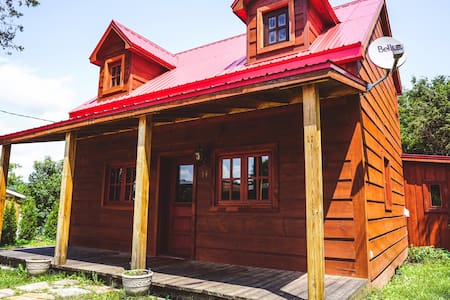 Log Cabin **Sterilized & Perfect for Isolation