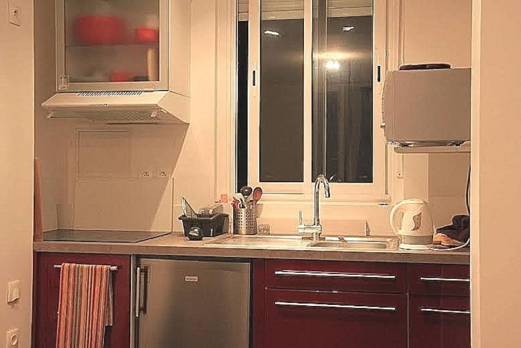 Cuisine intégrée, plaque à induction, hotte aspirante, réfrigérateur, four mixte micro-ondes-grill, évier inox.