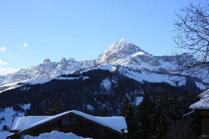 studio montagne - Crest-Voland