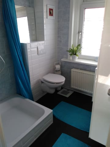 Newly renovated bathroom: rainwater shower, sink, wc
