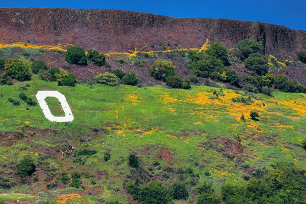 """Big """"O"""" of Oroville"""