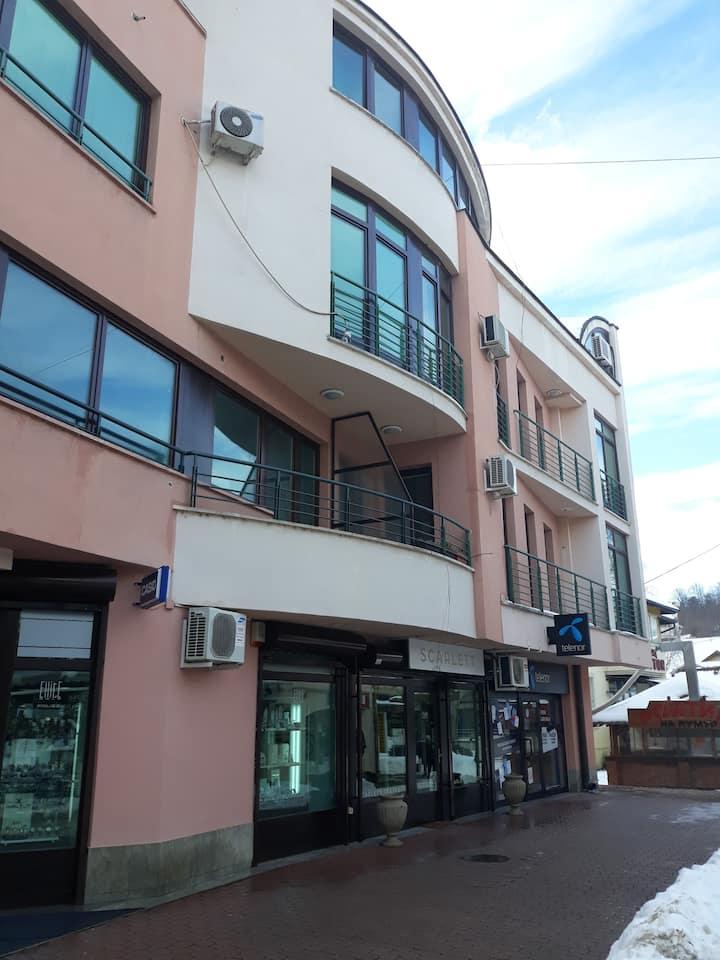 Apartmani Central & Free parking
