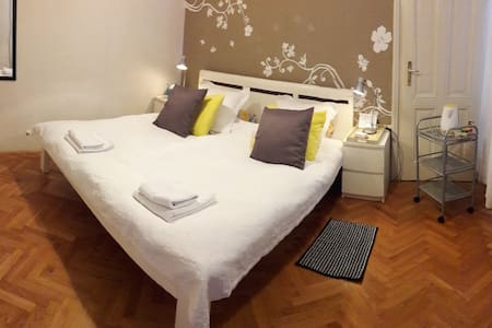 Very Central, walking distance, private entrance - Zagreb