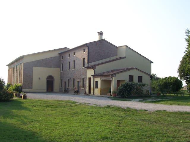 Doppia letti Singoli La Rovere - Cesole - 기타