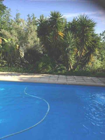 Mini villa dans grande propriété a Moriani plage