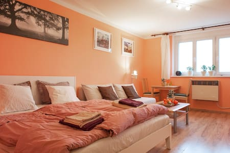 Bright & clen flat few minutes from the downtown - Prague - Apartment - 1