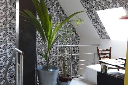 L'Alsace conviviale et pittoresque ! - Benfeld - Dům