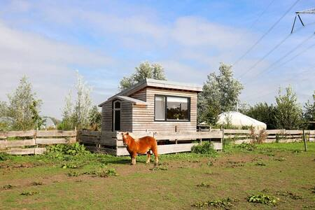 Tiny house on organic farm with vegetable garden