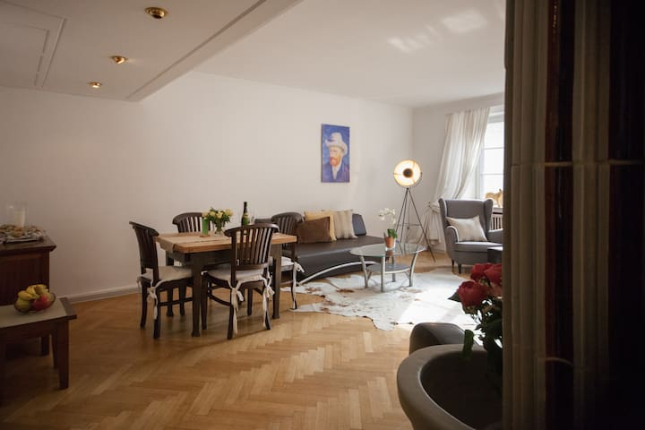 Luxury 4 rooms old town Heidelberg
