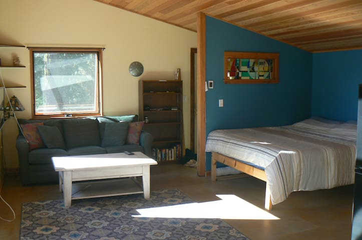 Mt Hood view studio in the woods, pet friendly!