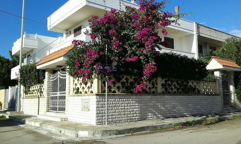 Casetta Beija Flor 7 posti letto