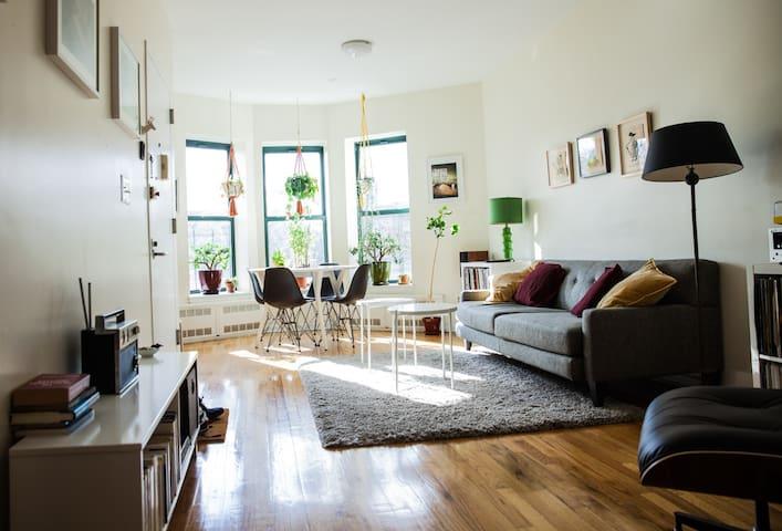 HUGE mid-century modern, sunny flat w/ amazing cat