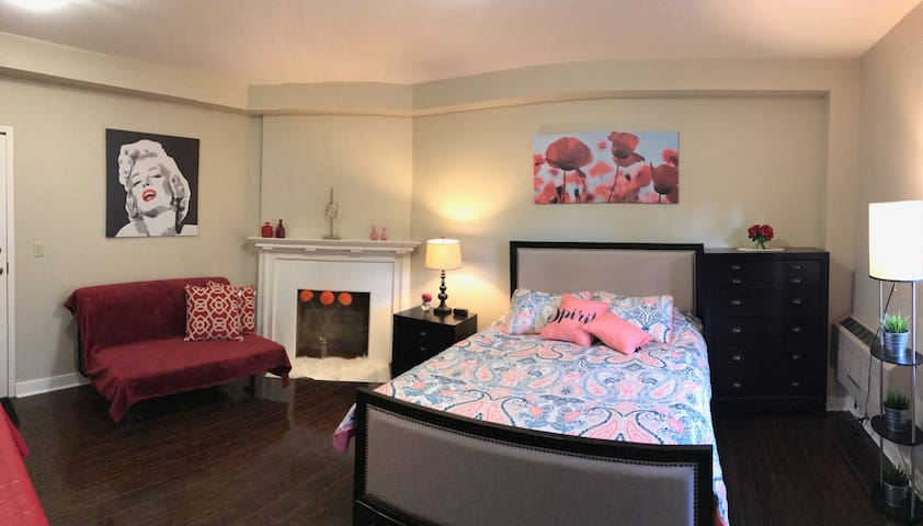 Downtown hotel style Apt with parking up to 4 ppl