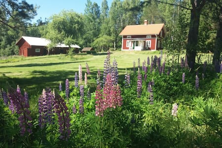 Charmantes Haus mitten in der Natur!