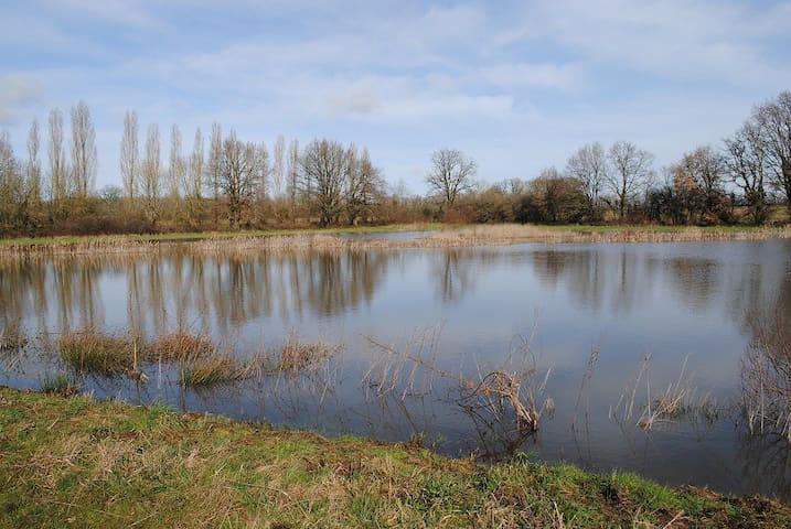 Au bord d'un étang, en pleine nature