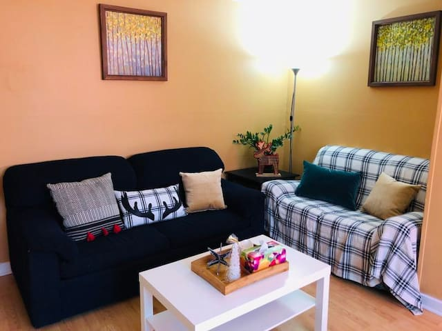 Cute &  Beautiful Two Bed Room In Metrotown  Area
