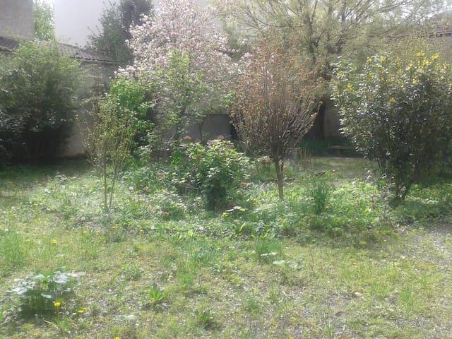 A green and sunny spot in Grenoble - Grenoble - Appartamento