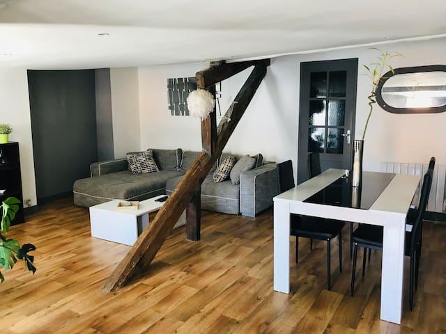Appartement cocooning en plein centre de Blois