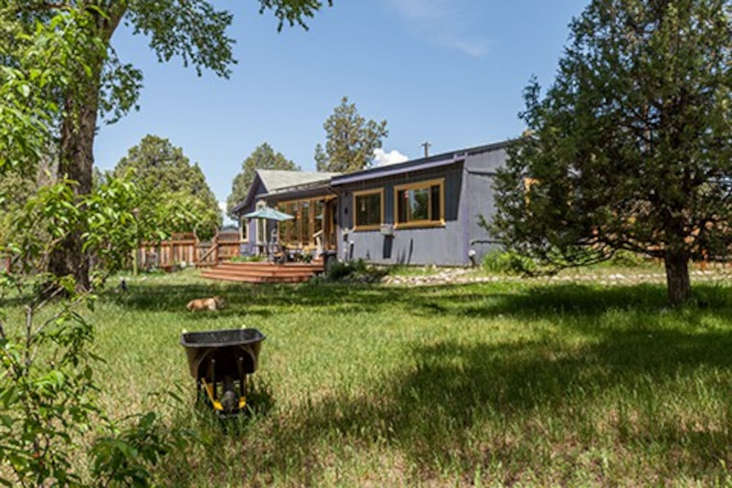 Creekside view of South-facing porch. Fenced yard plus acreage looking into Cottonwood trees, garden and open space. Does not feel like you are in town