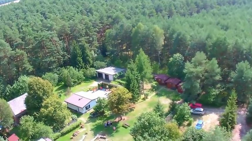 Polish-Dutch guesthouse in forest - Nowy Tomysl - Altres