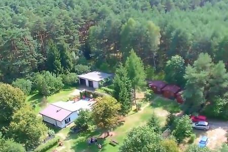 Polish-Dutch guesthouse in forest - Andere