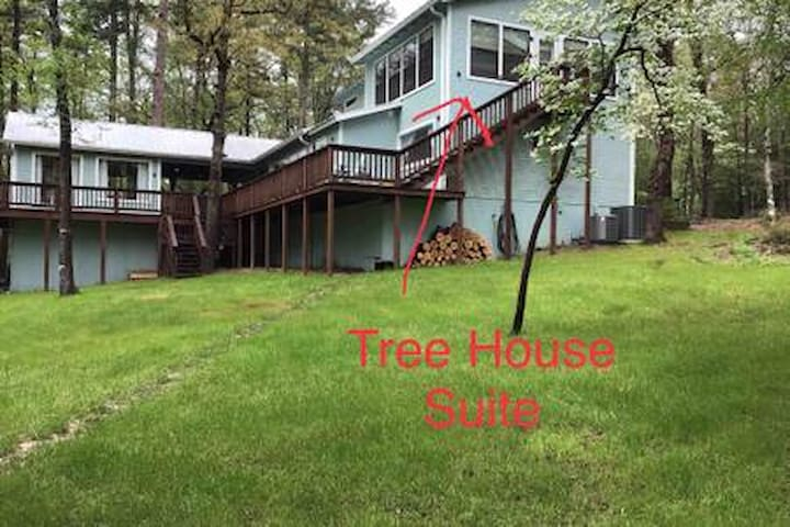 The Tree House Suite