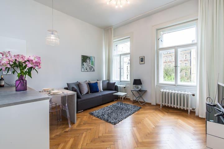 WONDERFUL SUNNY OLD TOWN FLAT - Prague - Apartment