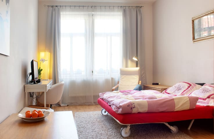 Perfect Studio for your Visit of Prague!