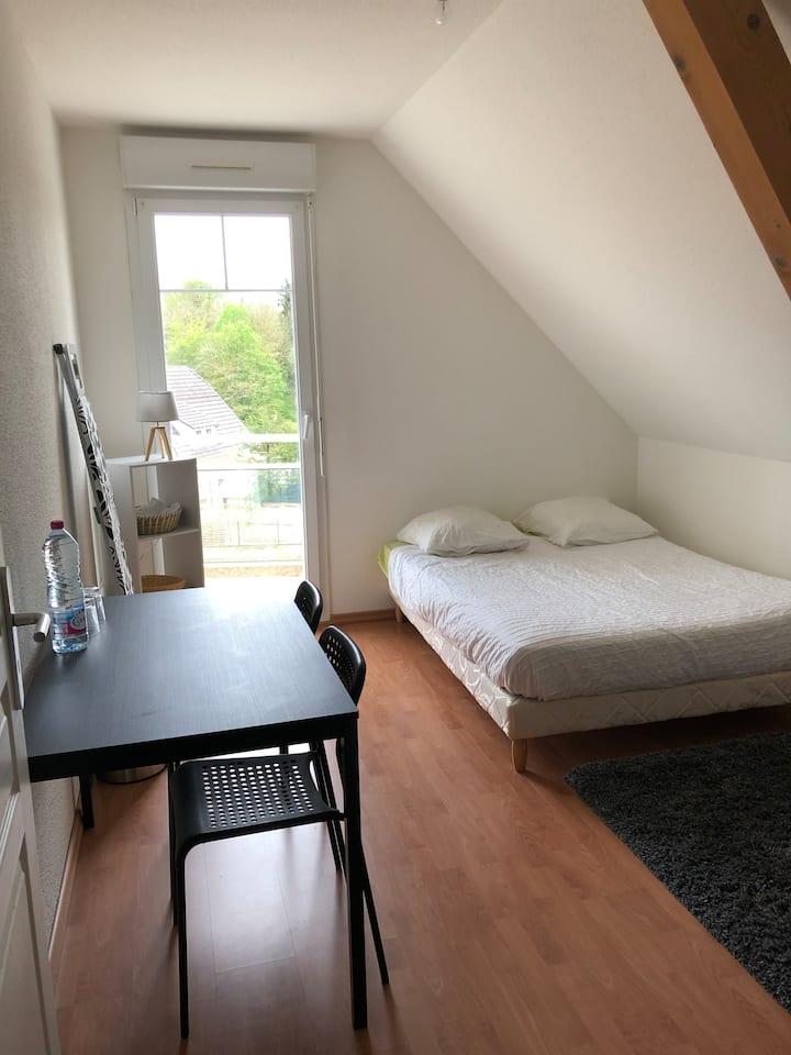 Blotzheim 5 min drive from Airport Basel-Mulhouse