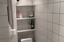 Toilet and shelfs and towel hangers