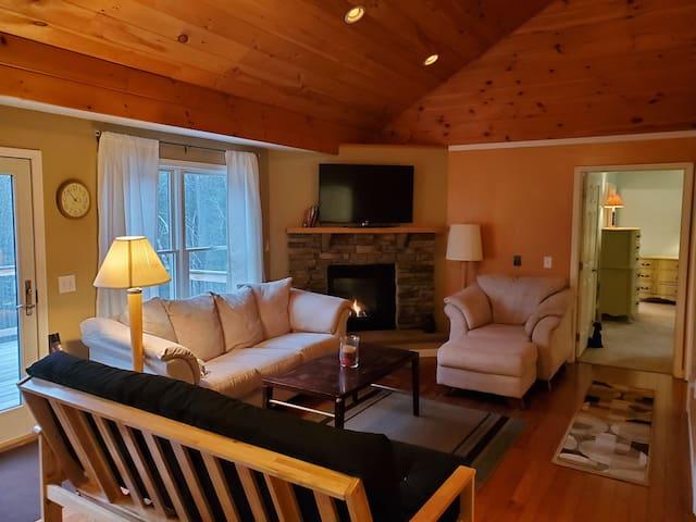 Living room, gas fireplace, loft ceiling, futon