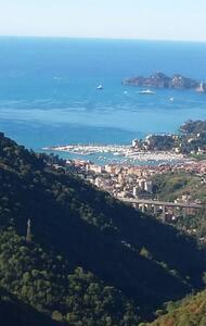 Bellavista tra mare e collina(010046-LT-0346)